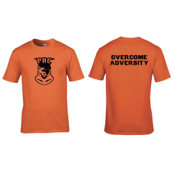 PAC Team orange shirt (shipping cost included)